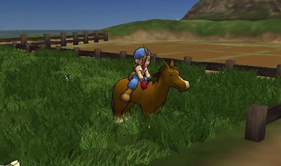 Cheat Harvest Moon Save The Homeland PS2 Lengkap Bahasa Indonesia