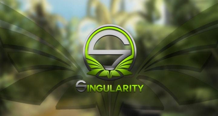 Team Singularity