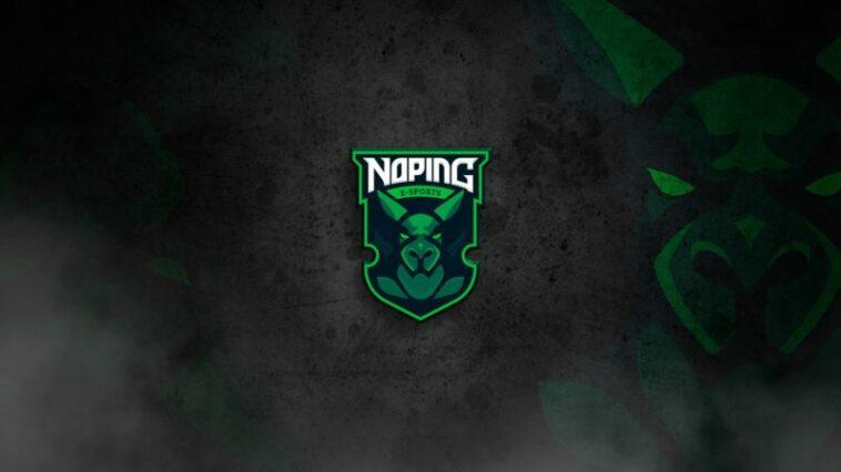 NoPing Logo