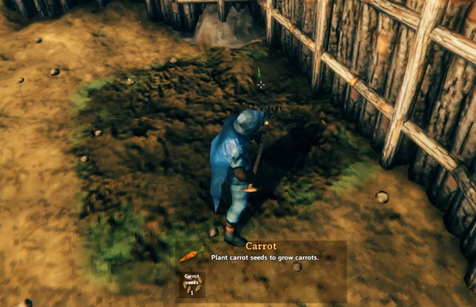 How To Get Carrot In Valheim 3
