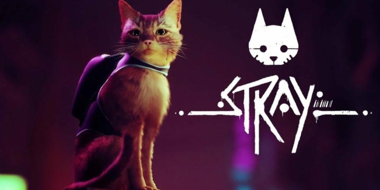 Stray Pamer Gameplay Perdana, Berpetualang Jadi Kucing Jalanan | BlueTwelve